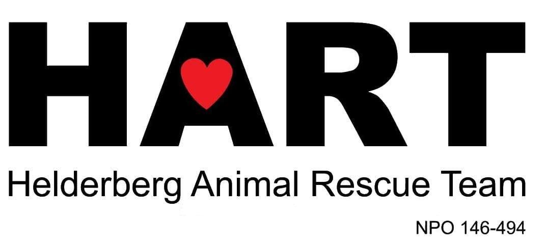 Helderberg Animal Rescue Team feature image